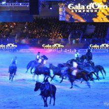 Festa dell' Ass.Amici del Cavallo Maremmano 05-06-07 Agosto 2016 – Blera (VT)
